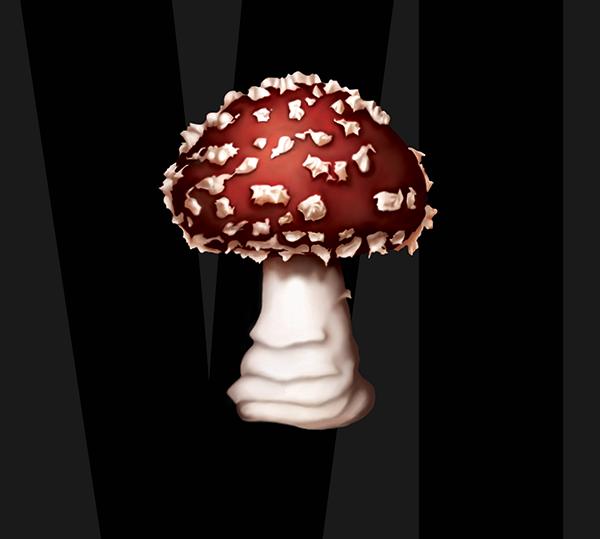 mushroom_chronicels