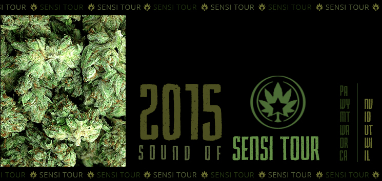 Sound of Sensi Tour
