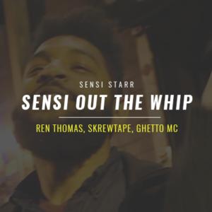 sensi-whip