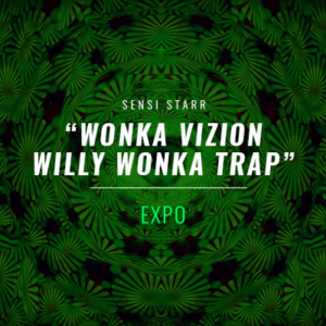 WONKA-VIZION-Willy-Wonka-Trap