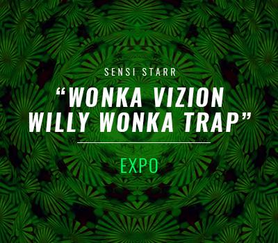 WONKA VIZION – Willy Wonka Trap